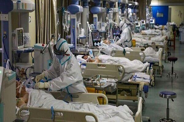 ۸۷ بیمار فارسی در جدال نفس گیر با کرونا