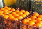 توزیع میوه شب عید از دیروز در فارس آغاز شده است