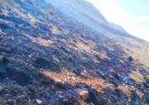 بی احتیاطی گردشگران در کوه سیاه اقلید آتش به پا کرد