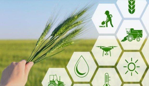 آمادگی شعب بانک کشاورزی فارس برای پرداخت تسهیلات به کشاورزان