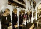 دو موزه جدید در استان فارس راهاندازی میشود