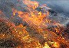 مهار آتش سوزی ارتفاعات فارس