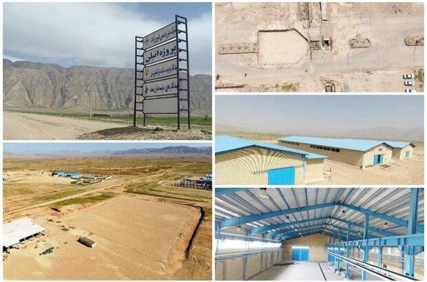 یک زمین خالی در استان فارس ۳۰ هزار سهامدار دارد