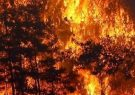 آتش سوزی در ارتفاعات پاسارگاد