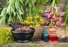گیاهانی که هورمون های بدن را تنظیم می کنند