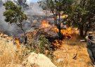 مرگ ۳ نفر در آتش سوزی ارتفاعات تنگ هایقر